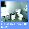 Picture of a disabled-friendly toilet